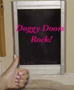 dog-door.jpg